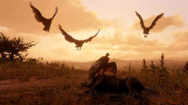 Red Dead Redemption 2 - Immagine 211848