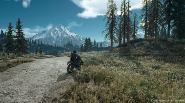 Days Gone - Immagine 215033