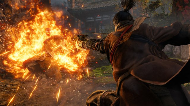 Sekiro: Shadows Die Twice - Immagine 216276