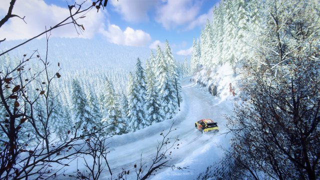 DiRT Rally 2.0 immagine 216324